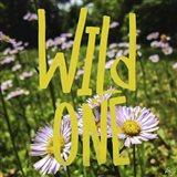 Wild One Flowers