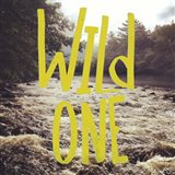 Wild One River