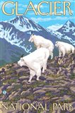 Glacier National Park Mountain Ad