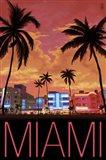 Miami City Palms Scene