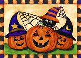 Pumpkins & Spider