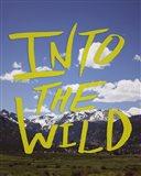 Into the Wild (Colorado)