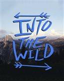 Into the Wild (Yosemite)