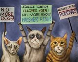 Cats On Strike