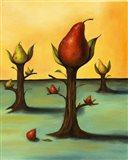 Pear Trees 3