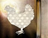Morning Chicken 1