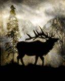 Mystic Elk
