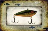 Fishing - Bait Lure