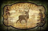 Welcome - Lodge Deer