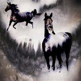 Black Mare - Dream 2
