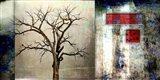 Cottonwood Tree Part 12