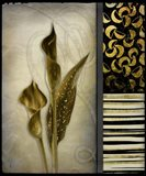 Gold Lily 1