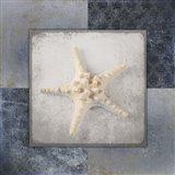 Blue Star Fish 3