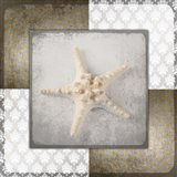 Vintage Natuical Star 2