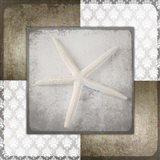 Vintage Natuical Star 3