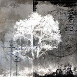 July Tree 10