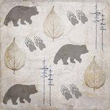 Bear Lodge Pattern