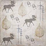 Moose Lodge Pattern