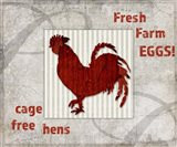 Decorative Pattern Farm Fresh Chicken