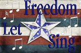 American Freedom Collection 4