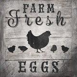 Farm Fresh V2
