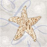 Sea Side Gypsy - Starfish