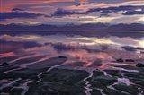 Iceland 88