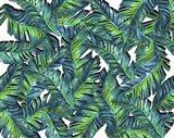 Leaves D