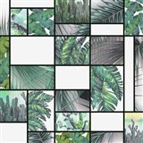 Cool Tropic