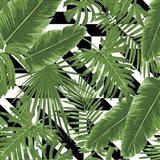 Geometric Tropical