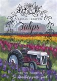Tractoring Through The Tulips 1