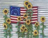 Aunt Cil's Flag