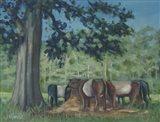 Rhode Island Oreo Cows