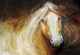 Autumn Breeze Equine
