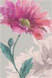 Flower Sketch 3