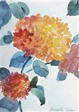 Watercolor Hortensia 2