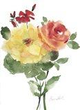 Roses Bogonvilia 1