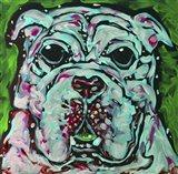 Bulldog Green