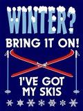 Winter Bring It Skis