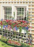 Butchart Gardens Window Box