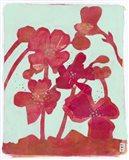 Pollination 1