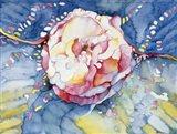 Essence Rose