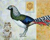 Diamond Pheasant