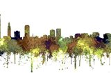 Baton Rouge Louisiana Skyline - Safari Buff
