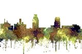 Camden New Jersey Skyline - Safari Buff