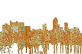 New Brunswick New Jersey Skyline - Rust
