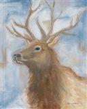 Payson Elk
