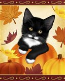 Falling Leaves Cat