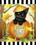 Hello Fall Cat