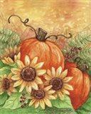 Sunflowers Autumn